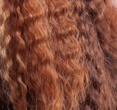 Red hair Stock Image