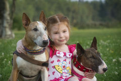 Red hair child with a bull terrier Stock Photography