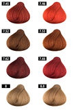 Red Hair Color Catalogue Stock Image