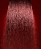Red Hair Frizzy Royalty Free Stock Photos