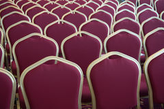 Red hair seats in empty conference room. Close-up shot of chair seats in empty conference room Stock Image
