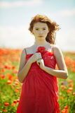 Red haired beautiful girl in poppy field Royalty Free Stock Image