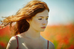 Red haired beautiful girl in poppy field Royalty Free Stock Photography