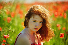 Red haired beautiful girl in poppy field Royalty Free Stock Photos