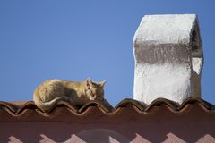 A red-haired cat sleeps in the sun on the tiles of a roof of a typical Mediterranean house with a traditional shaped chimney stock photo
