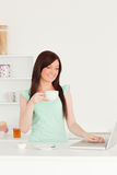 Red-haired female relaxing with her laptop Stock Photography