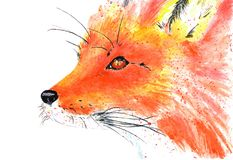 Lovely forest resident red fox. Watercolor illustration. Red-haired fox on white background, spray of paints. Watercolor illustration Royalty Free Stock Image