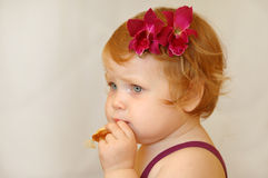 Red-haired girl. Looks toward, white background, red flower, pin eating cookies Royalty Free Stock Image