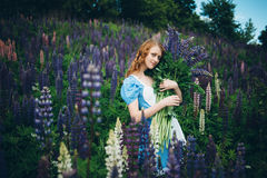 Red-haired girl in blue dress with lupines. Red-haired woman in blue dress with lupines Royalty Free Stock Photography