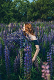 Red-haired girl in blue dress with lupines. Red-haired woman in blue dress with lupines Stock Image