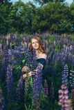 Red-haired girl in blue dress with lupines. Red-haired woman in blue dress with lupines Royalty Free Stock Photo
