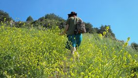 Red-haired girl in a cowboy hat and a backpack walks on a mountain path. A young red-haired traveler girl in a cowboy hat walks along a mountain path overgrown stock video footage
