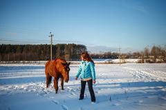 Red-haired girl goes with a horse in a snowy field stock images