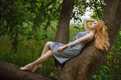 The red-haired girl lying on the tree in the forest royalty free stock photo