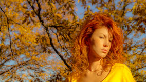 Red haired girl portrait Royalty Free Stock Images
