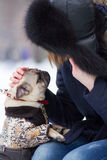 Red haired girl with pug dog. Red haired teen girl playing with funny pug puppy on snow in the park Stock Photo