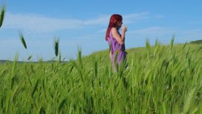 A red-haired girl in a purple dress walks along a path along a field of green grass and spikelets swaying in the wind. In the background is blue sky, mountains stock video