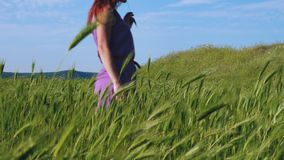 A red-haired girl in a purple dress walks along a path along a field of green grass and spikelets swaying in the wind. stock video footage