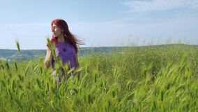 A red-haired girl in a purple dress walks along a path along a field of green grass and spikelets swaying in the wind. stock footage