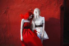 Red-haired girl in a red dress and girl with long white hair in stock images