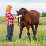 Red-haired girl in a red plaid shirt stroking a brown horse royalty free stock images