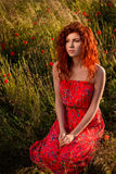 Red-haired girl sitting in the poppies meadow at sunset Stock Images