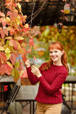 Red-haired girl in sweater smiling happy on autumn background Royalty Free Stock Images