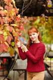 Red-haired girl in sweater smiling happy on autumn background Stock Photography