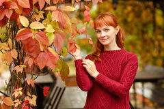 Red-haired girl in sweater smiling happy on autumn background Royalty Free Stock Photos