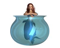 Red-haired Mermaid in a goldfish bowl Royalty Free Stock Photos