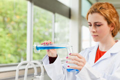 Red-haired scientist pouring liquid Stock Image