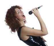 The red-haired singe Stock Image