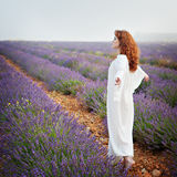 Red-haired white woman on a lavender field, Stock Photography