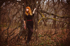 Red-haired woman in black dress dark forest, dry royalty free stock photography