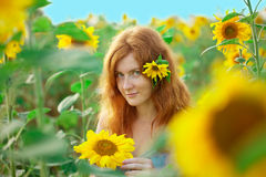 Red-haired woman with sunflowers Stock Photos