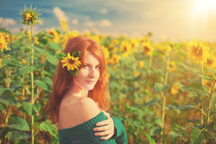 Red-haired woman with sunflowers Stock Image
