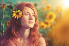 Red-haired woman with sunflowers Stock Photo
