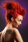 Red hairstyle. Beauty portrait of woman in profile with red hair and distinctive hairstyle Royalty Free Stock Photography
