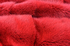 Red hairy fur  texture Royalty Free Stock Images