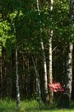 Red hammock in green forest stock image