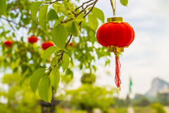 Red hanging chinese traditional Royalty Free Stock Photos