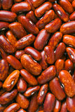 Red haricot beans Royalty Free Stock Photography