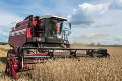 Red harvester at work. Combine harvester working in a field on a sunny day Stock Photography