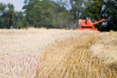 Red harvesting machine Stock Image