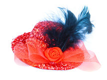 Red hat with red rose and birds feathe Stock Photos