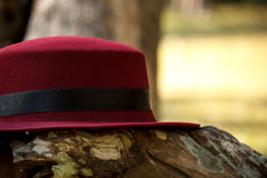 Red hat on trunk. With garden background Royalty Free Stock Photo