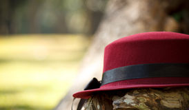 Red hat on trunk. With garden background Royalty Free Stock Image