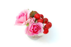Red haw berries and two pink roses Stock Photos