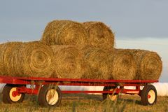 Red Hay Wagon Stock Image