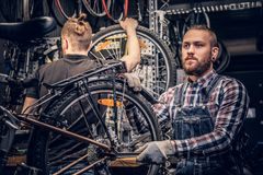 Mechanic fixing rear derailleur from a bicycle. stock photography